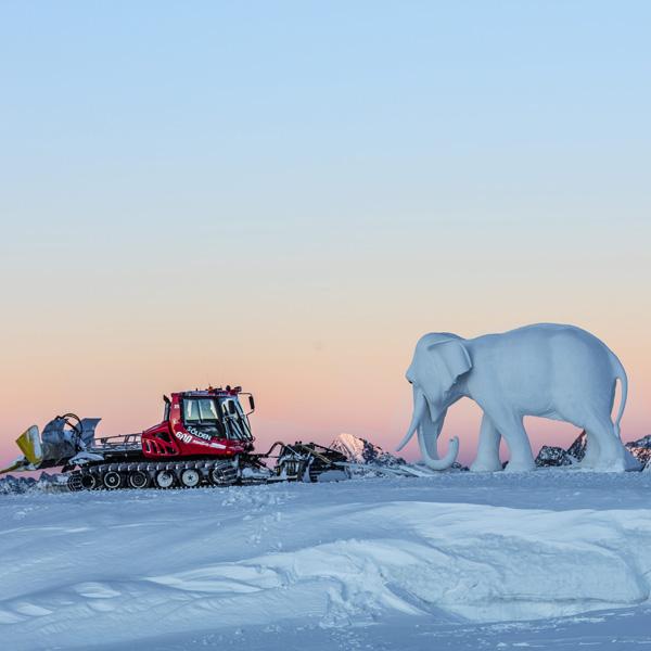 Hannibal Elefant Pistenbully