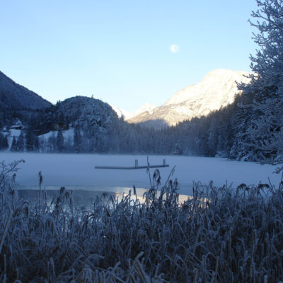 gruener-piburgersee-winter1-600x600