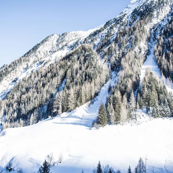 Ausblick Alpengasthof Grüner